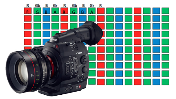 What Exactly is Canon Raw? | Tutorials & Guides | Blog