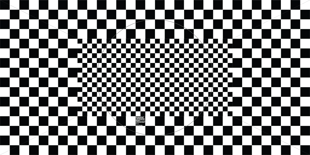 Len distortion grid
