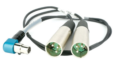 Lectrosonics TA 5-Pin Female to Dual XLR 3-Pin Male Cable - 20""