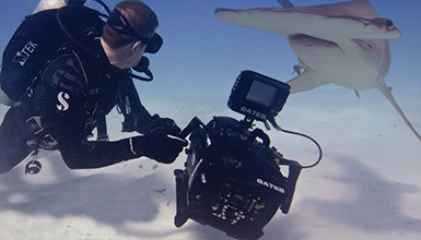 Intro image for article AbelCine Named Official Training Partner for Gates Underwater Housings