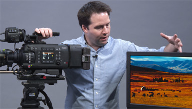 Intro image for article At the Bench: A Look at the Canon C700 and DP-V2420 Monitor