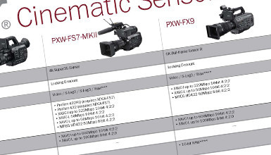 Intro image for article Sony Cinematic Sensor Camera Lineup