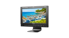 "Flanders Scientific DM170 17"" Production Monitor"
