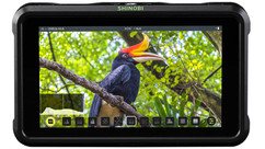 "ATOMOS Shinobi 5"" HDR Field Monitor"