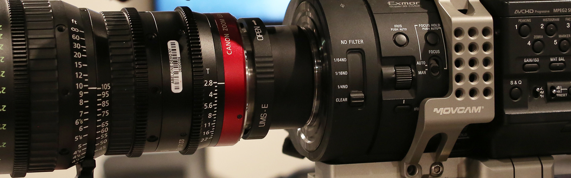 Header image for article Evaluating the Canon 30-300 Cinema Zoom