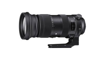 Sigma 60-600mm f/4.5-6.3 DG OS HSM Sports Zoom - EF Mount