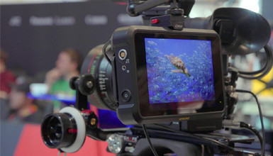 Intro image for article NAB 2019: Atomos Shogun 7